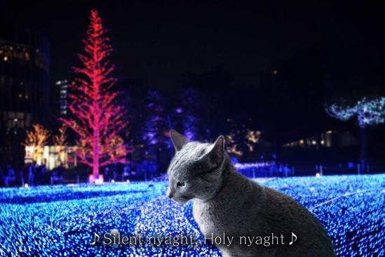 クリスマスイブ14