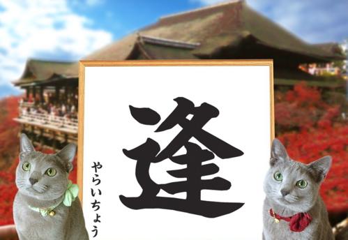 今年の漢字2010 4