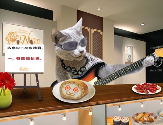 回顧猫12
