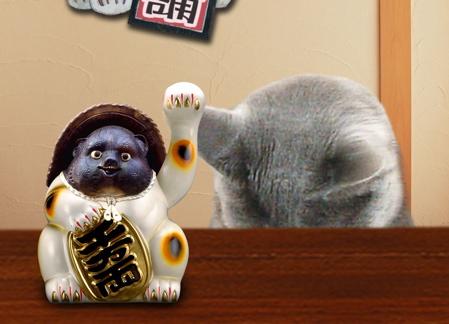 招き猫職猫6