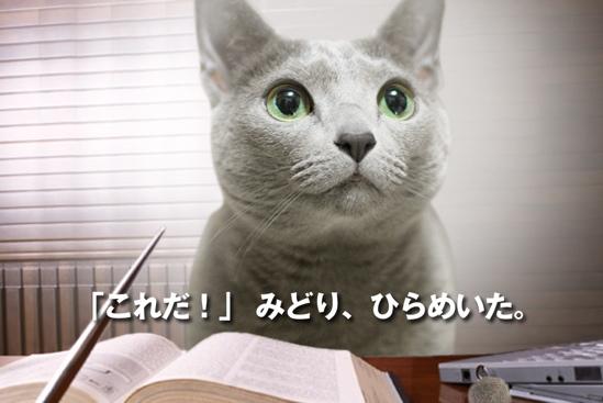 プロジェクトX猫13