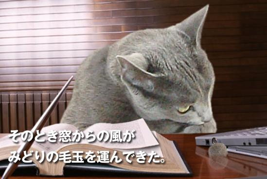 プロジェクトX猫12