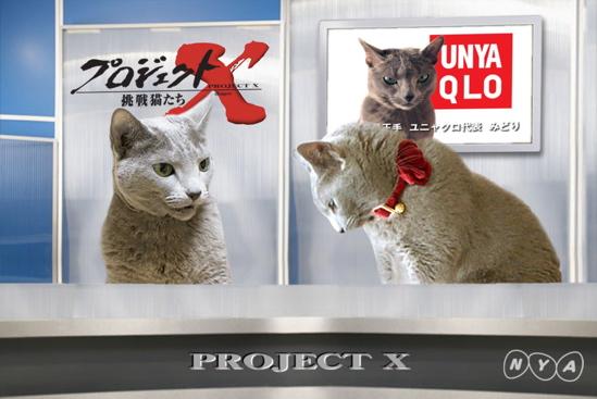 プロジェクトX猫9