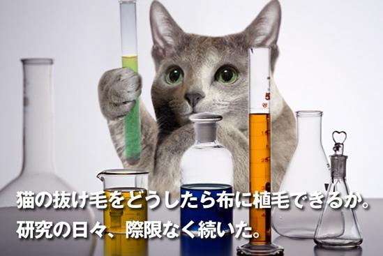 プロジェクトX猫19