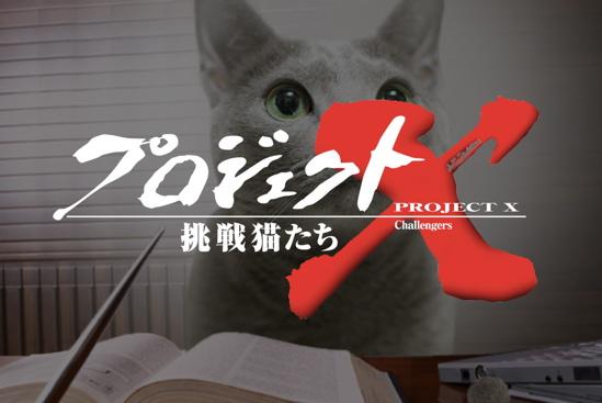 プロジェクトX猫14
