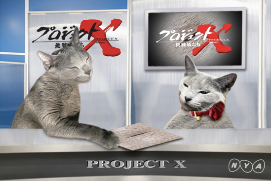 プロジェクトX猫25