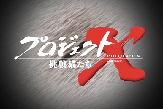 プロジェクトX猫23