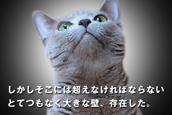 プロジェクトX猫21
