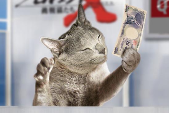 プロジェクトX猫35