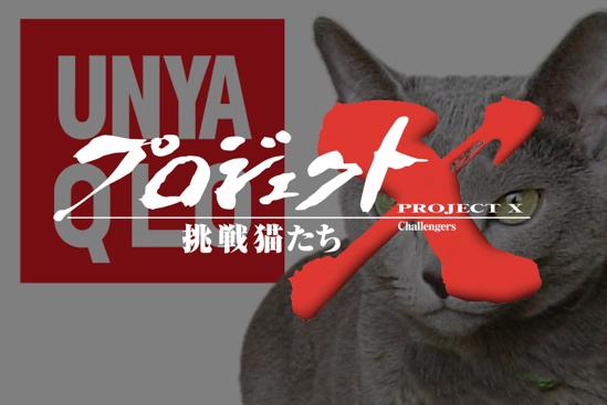 プロジェクトX猫33