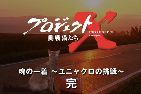 プロジェクトX猫40
