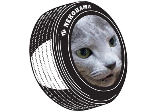 猫浜タイヤ7