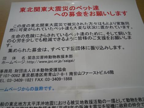 DSCN7418_convert_20110326212551.jpg