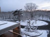 ナス雪景色