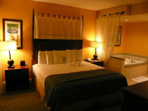 bedroom_convert_20100208125718.jpg