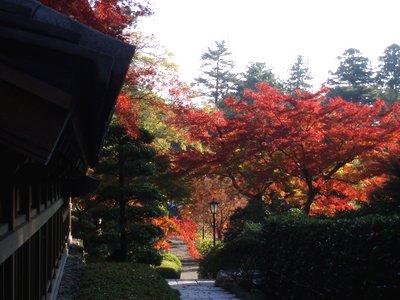 能仁寺の紅葉3