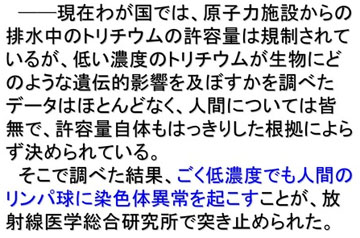 blog 広瀬隆「核融合」24