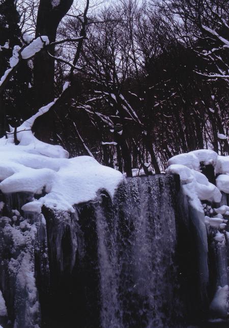 ブログ銚子大滝3