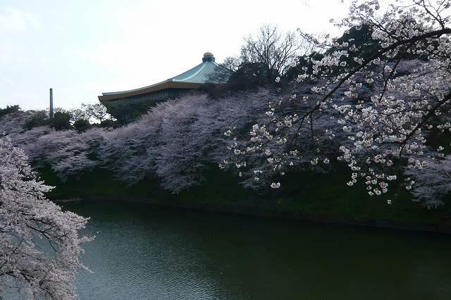 chidorigafuchi01.jpg