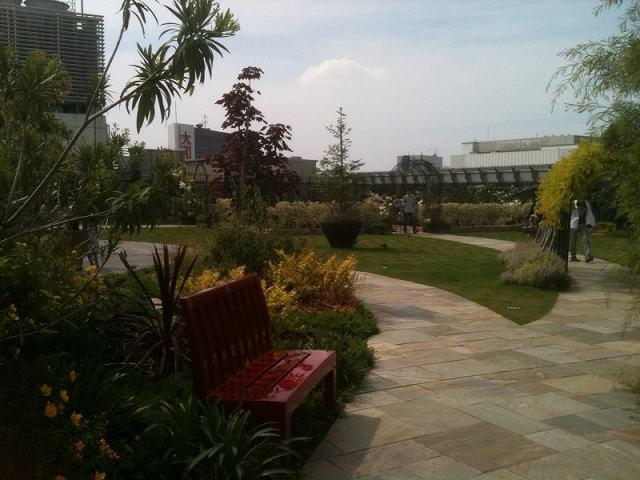 garden3.jpg