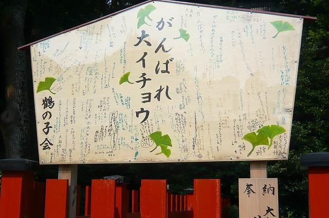kamakura0011.jpg