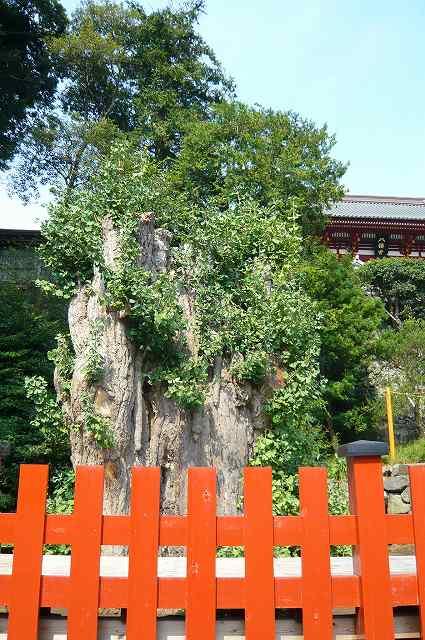 kamakura0012.jpg