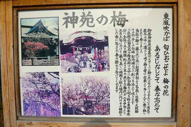 kameido_tenjin08.jpg