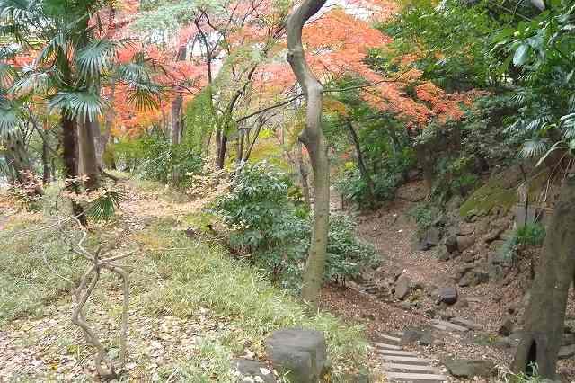 shibakoen04.jpg