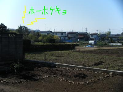 snap_yomesyuutomeguti_201040204536.jpg