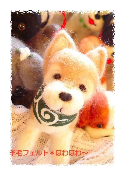 柴犬と唐草バンダナ