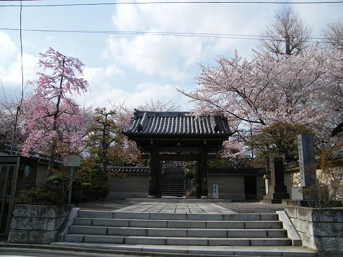 100410武蔵関の寺S15 041