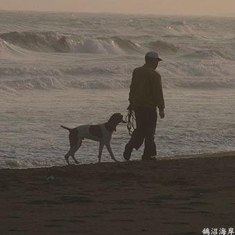 犬RIMG0117