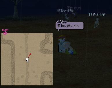 yako114.jpg