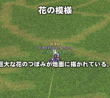 yako208.jpg