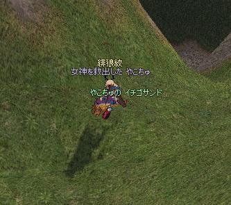 yako215.jpg