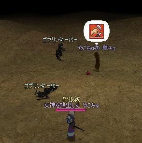 yako220.jpg
