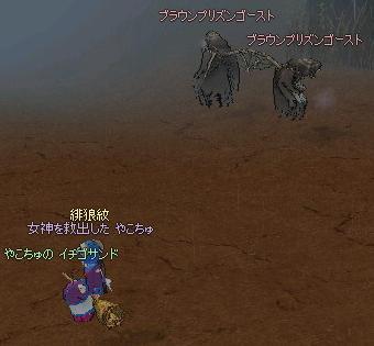 yako225.jpg