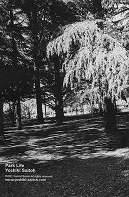 park02_20110506231337.jpg