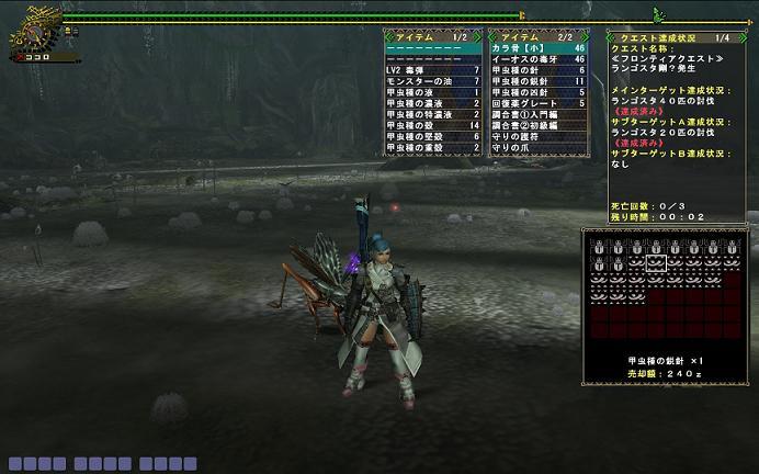 mhf_20100209_004543_495.jpg