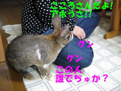 IMG_帰省4762