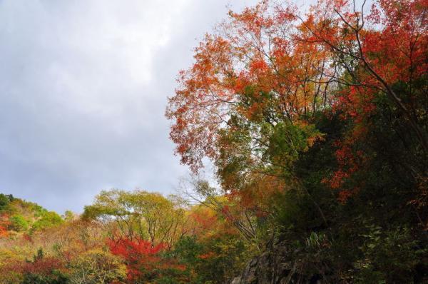12阿歌古渓谷09.11.14