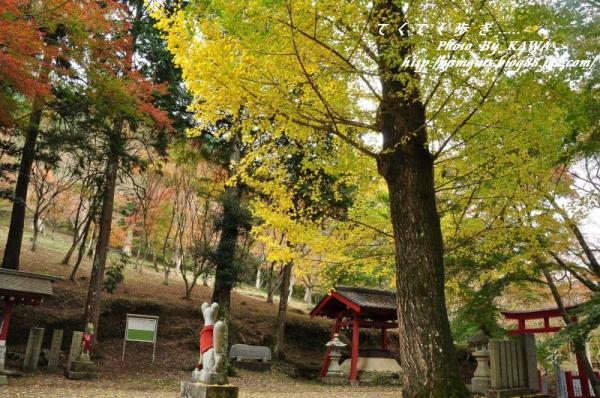 3稲荷山DSC_5315