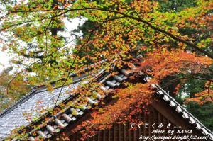4稲荷山DSC_5266