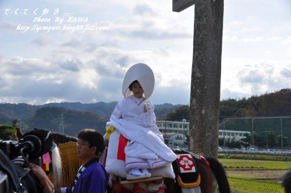6お供馬結婚式_6177
