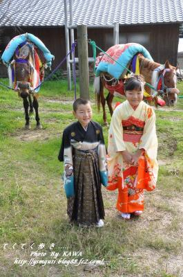 11お供馬結婚式_6166