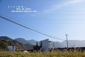 13白糸_6760