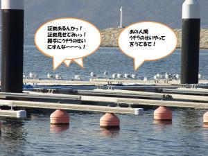 RIMG0124.jpg