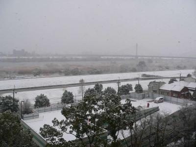 写真キャプション=2月12日(土)、今年はじめて雪景色となった上新庄から大阪の梅田方面を見た様子