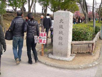 写真キャプション=昨年に続き、早めの春を感じに出掛けた大阪城公園の梅林