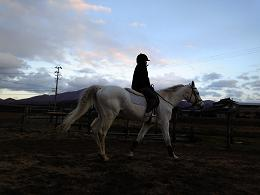 子供の乗馬の様子